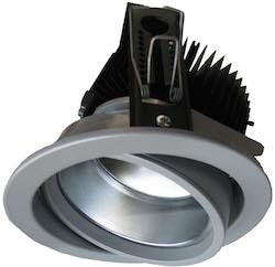 Einbau-Downlight LED schwenkbar Fleischlicht